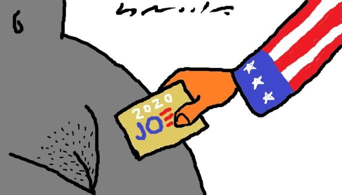 BOLLO Y VOTO